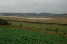 Foto af klitplantagerne ved Vandet Sø